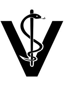 Veterinária 1
